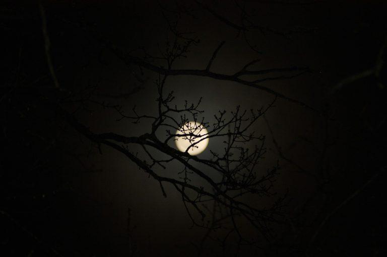 moon-2245498_1280